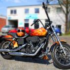 harley davidson true fire